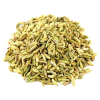 Fennel Oleoresin